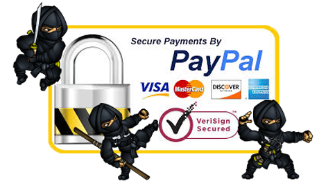 Paypal Secure Transactions