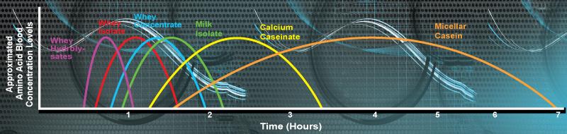 PROvision 6 Amino Acid Time Lapse
